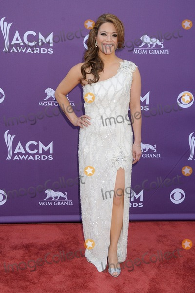 Angie Johnson Photo - 7 April 2013 - Las Vegas California - Angie Johnson 48th Annual Academy of Country Music Awards - Arrivals held at the MGM Grand Garden Arena Photo Credit Byron PurvisAdMedia