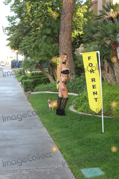 Photo - Nadeea VolianovaThe Russian Pop Star is spotted wearing a tiny bikini while walking her dog in Beverly Hills CA 03-22-17