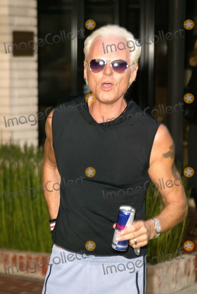 Michael Des Barres,Michael DesBarres Photo - Grand Opening of the First Stella McCartney Store in Los Angeles