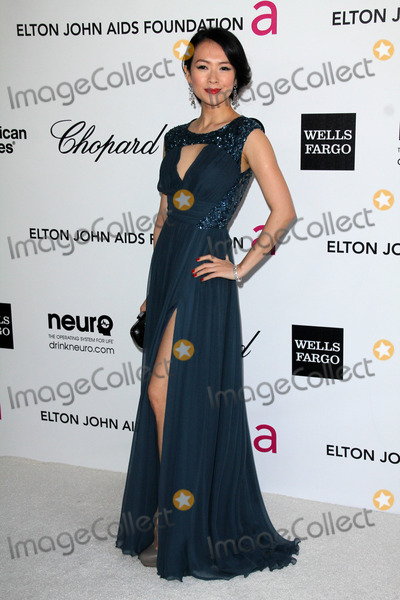 Ziyi Zhang,Elton John Photo - 20th Annual Elton John AIDS Foundation Academy Awards Party