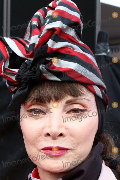 Toni Basil Photo - ALS Association Golden West Chapter Los Angeles County Walk To D