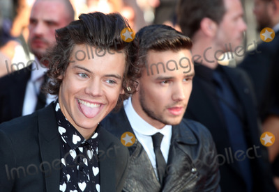 Photos From 'One Direction, This Is Us' Premiere