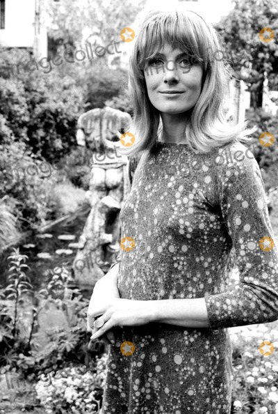 Vanessa Redgrave Photo - Archival Pictures - Globe Photos - 72845