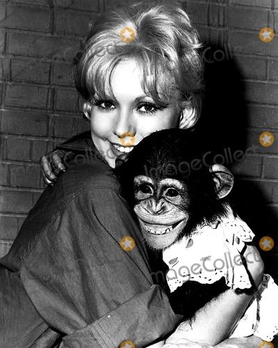 Kim Novak,THE SET Photo - Archival Pictures - Globe Photos - 69575