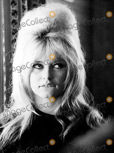 Brigitte Bardot Photo - Brigitte Bardot 345249 Ipol ArchiveipolGlobe Photos Inc Brigittebardotretro