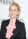 Anne Heche Photo - 01 March 2017 - Hollywood California - Anne Heche The Last Word Los Angeles Premiere held at ArcLight Hollywood Photo Credit AdMedia