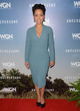 Amirah Vann Photo - 08 January  - Pasadena Ca - Amirah Vann Arrivals for the WGN America Winter TCA Tour Underground held at The Langham Hotel Photo Credit Birdie ThompsonAdMedia