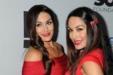 The Bella Twins Photo 3