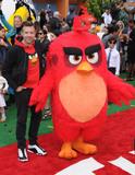 Angry Bird Photo 3