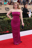 Anna Chlumsky Photo - 29 January 2017 - Los Angeles California - Anna Chlumsky 23rd Annual Screen Actors Guild Awards held at The Shrine Expo Hall Photo Credit F SadouAdMedia