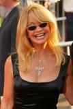 Goldie Hawn Photo - Goldie Hawn at the premiere of Raising Helen El Capitan Hollywood CA 05-26-04