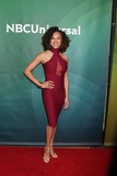 Ashley Darby Photo - LOS ANGELES - JAN 14  Ashley Darby at the NBCUniversal Cable TCA Press Day Winter 2016 at the Langham Huntington Hotel on January 14 2016 in Pasadena CA