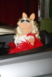 Miss Piggy Photo 3