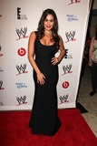 Nikki Bella Photo 3