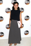 Ali Wong Photo - LOS ANGELES - AUG 4  Ali Wong at the ABC TCA Summer 2016 Party at the Beverly Hilton Hotel on August 4 2016 in Beverly Hills CA