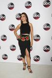 Ming-Na Wen Photo - vLOS ANGELES - JAN 9  Ming-Na Wen at the Disney ABC TV 2016 TCA Party at the The Langham Huntington Hotel on January 9 2016 in Pasadena CA
