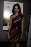 Daniella Van Graas Photo - New York 12-3-09Daniella Van Graasat the NY Premiere of Serious Moonlght  at Cinema 2   1001 3aveDigital photo by Maggie Wilson-PHOTOlinknet