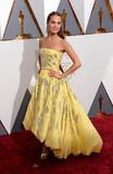 Alicia Vikander Photo - Photo by PDstarmaxinccomSTAR MAX2016ALL RIGHTS RESERVEDTelephoneFax (212) 995-119622816Alicia Vikander at the 88th Annual Academy Awards (Oscars) in Hollywood CA(Los Angeles USA)