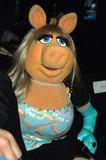 Miss Piggy Photo 3