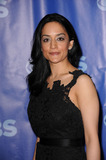 Archie Panjabi Photo 3