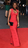 Amma Asante Photo - London UK Amma Asante at the Premiere of A United Kingdom  - the Opening Gala of the 60th BFI London Film Festival at Odeon Leicester Square London on Wednesday 5 October 2016 Ref LMK392 -61093-061016Vivienne VincentLandmark Media WWWLMKMEDIACOM