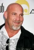 Bill Goldberg Photo 3