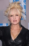 Cyndi Lauper Photo 3