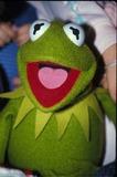 Kermit the Frog Photo 3