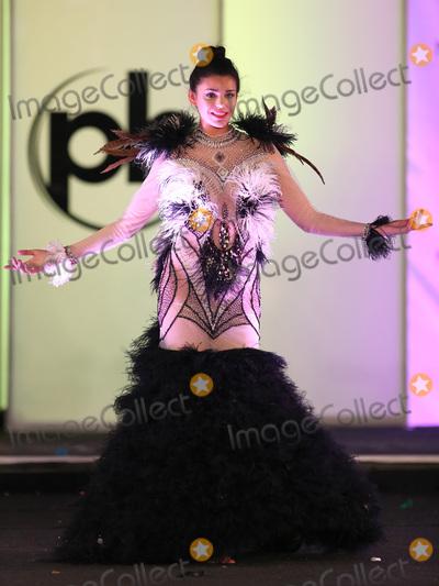 Photo - 18 November 2017 - Las Vegas NV -  Miss Uruguay Marisol Acosta  66th Miss Universe Pageant National Costume Show at Planet Hollywood resort Hotel and Casino Photo Credit MJTAdMedia