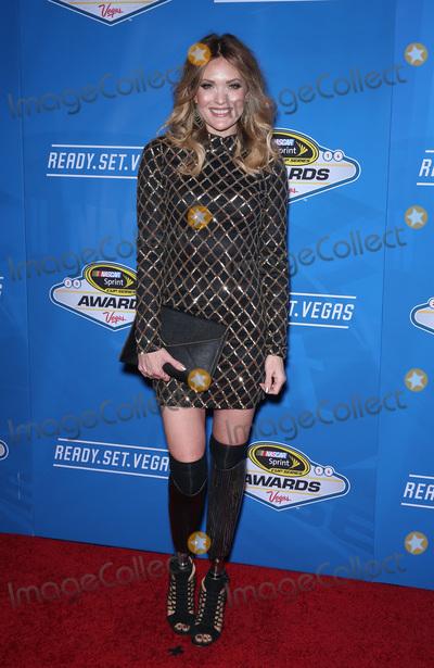 Photo - 2016 NASCAR Awards red carpet arrivals