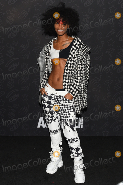 Ari Fitz Photo - 10 January 2020 - Beverly Hills California - Ari Fitz Netflixs AJ And The Queen Season 1 Premiere at The Egyptian Theatre in Hollywood Photo Credit Billy BennightAdMedia