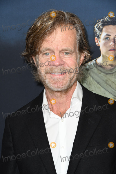 Photo - 24 May 2018 - Hollywood California - William H Macy Showtimes Shameless FYC Event held at Lindwood Dunn Theater Photo Credit Birdie ThompsonAdMedia