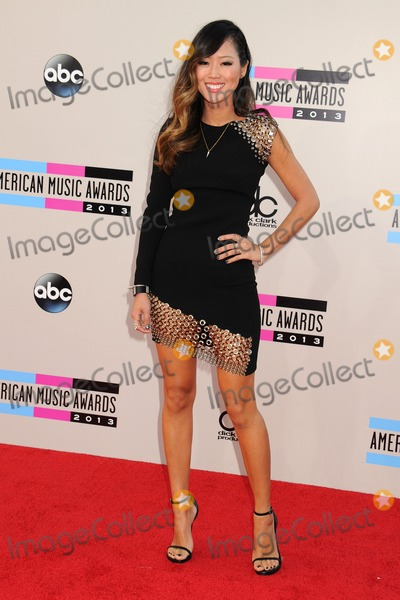 Photo - 2013 American Music Awards - Arrivals