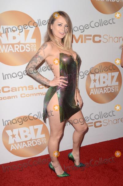 Photo - LOS ANGELES - JAN 17  Natasha Starr at the 2019 XBIZ Awards at the Westin Bonaventure Hotel on January 17 2019 in Los Angeles CA
