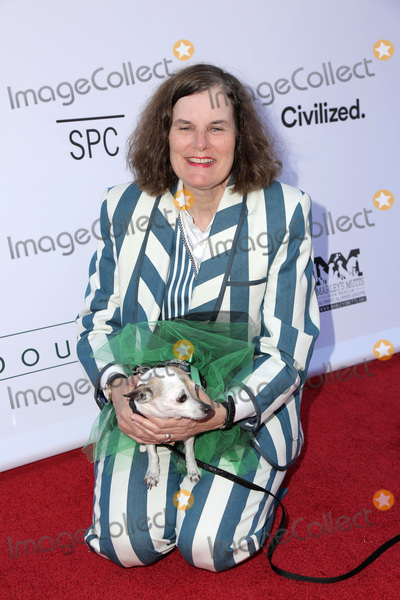 Photo - LOS ANGELES - JUN 19  Paula Poundstone at the Boundaries Los Angeles Premiere at the Egyptian Theater on June 19 2018 in Los Angeles CA