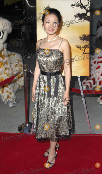 Yi Ding Photo - Photo by Michael Germanastarmaxinccom20054505Yi Ding at the premiere of Smile(Los Angeles CA)