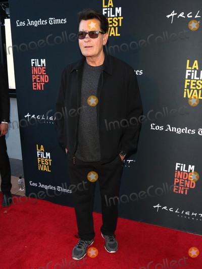 Photos From 'Stuntman' Premiere