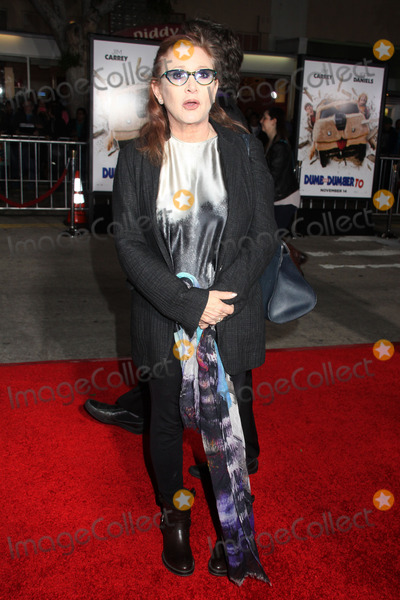 Photo - Dumb and Dumber To Premiere