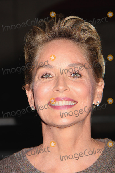 Photo - 2014 Hollywood Film Festival Opening Night Red Carpet
