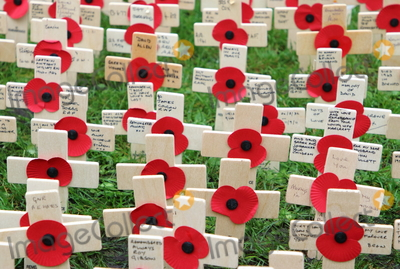 Photo - Opening of the Westminster Abbey Field of Remembrance