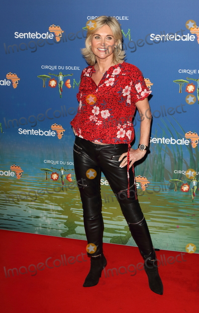 Anthea Turner Photo - London UK  Anthea Turner at Totem by Cirque du Soleil Press Night at the Royal Albert Hall Kensington Gore London on January 16th 2019Ref LMK73-J4210-170119Keith MayhewLandmark MediaWWWLMKMEDIACOM