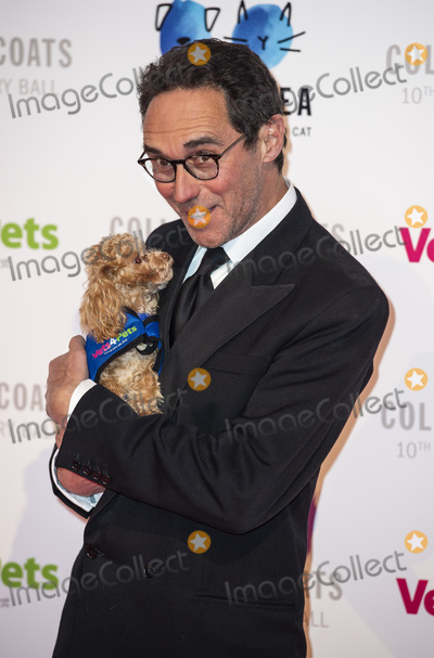 Photo - Battersea Dogs  Cats Home Collars  Coats Gala Ball 2018