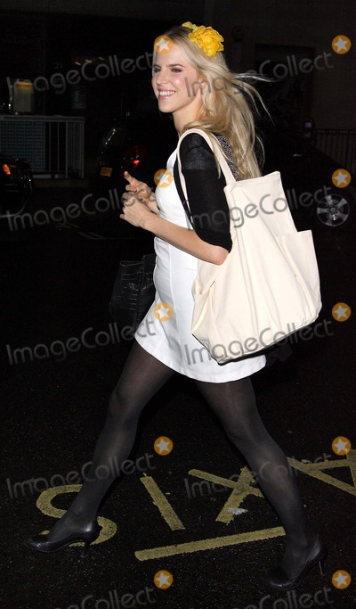 Alexandra Aitken Photo - London  UK  Alexandra Aitken at the An Evening at the Sanderson a gala event to benefit the Clic Sargent Charity held at the Sanderson Hotel 15th May  2007Keith MayhewLandmark Media