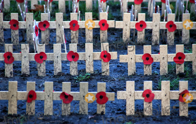 Photos From Remembrance Day 2020 preparations