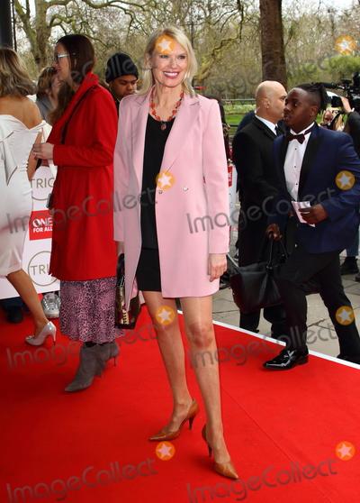 Anneka Rice Photo - London UK Anneka Rice at The TRIC Awards 2020 held at the Grosvenor House Park Lane London on 10th March 2020Ref LMK73-J6348-110320Keith MayhewLandmark MediaWWWLMKMEDIACOM