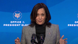 Queen Photo - United States Vice President-elect Kamala Harris speaks after US President-elect Joe Biden made remarks  Key Members of White House Science Team from the Queen Theatre in Wilmington Delaware on Friday January 15 2021 Credit Biden Transition TV via CNPAdMedia