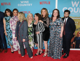 Paula Pell Photo - Tina Fey Maya Rudolph Amy Poehler Paula PellRachel DratchAna GasteyerEmily Spivey and Jason Schwartzman at the World Premiere of WINE COUNTRY at the Paris Theater in New York New York  USA 08 May 2019