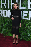 Alysia Reiner Photo - 03 March 2019 - New York New York - Alysia Reiner The World Premiere of Triple Frontier at Jazz at Lincoln Center Photo Credit LJ FotosAdMedia