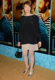 Ann Magnuson Photo - 15 January 2014 - Hollywood California - Ann Magnuson Cast and celebrity arrivals for the Los Angeles premiere of HBOs new comedy series LOOKING at The Paramount Theater in Paramount Studios in Hollywood Ca Photo Credit Birdie ThompsonAdMedia