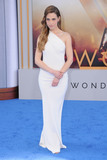 Alexandra Siegel Photo - 25 May 2017 - Hollywood California - Alexandra Siegel World  Premiere of Warner Bros Pictures  Wonder Woman held at The Pantages Theater in Hollywood Photo Credit Birdie ThompsonAdMedia